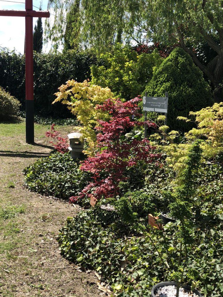 Labyrinthe aux 100 fleurs - Trouillas - Jardins
