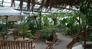 Labyrinthe aux 100 fleurs - Les parcs et jardins