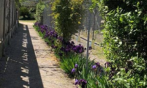 Labyrinthe aux 100 fleurs - Trouillas - Les horaires du parc de loisirs
